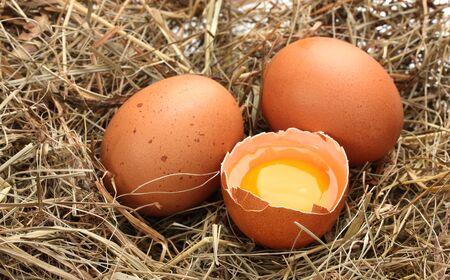 chicken eggs in a nest closeup photo