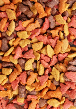 Dry cat food close-up Stock Photo - 12134320