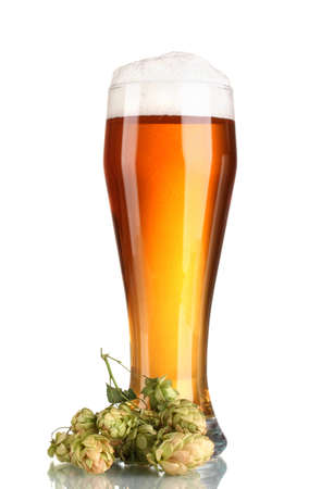 beer in a glass and green hop isolated on white photo