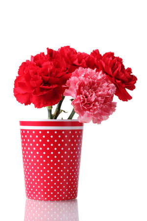 Bouquet of carnations in a glass isolated on white Stock Photo - 12439582