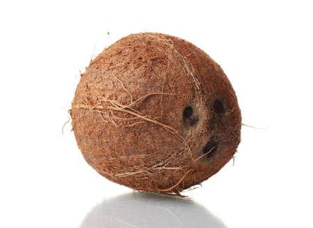 Ð¡oconut isolated on white photo