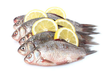 Fresh fishes with lemon isolated on white photo