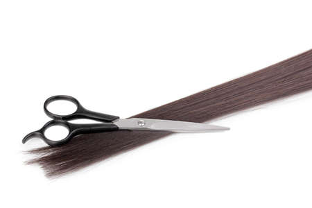Shiny brown hair and hair cutting shears isolated on white photo