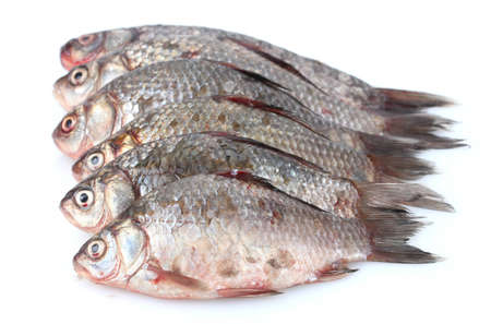 Fresh fishes isolated on white Stock Photo - 12664872
