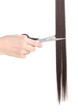 Shiny brown hair in hairdresser's hands isolated on white Stock Photo - 12731580