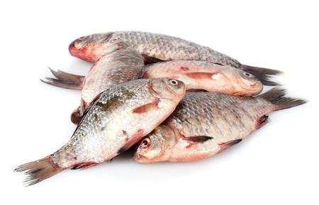 Fresh fishes isolated on white Stock Photo - 12913337
