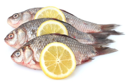 Fresh fishes with lemon isolated on white photo