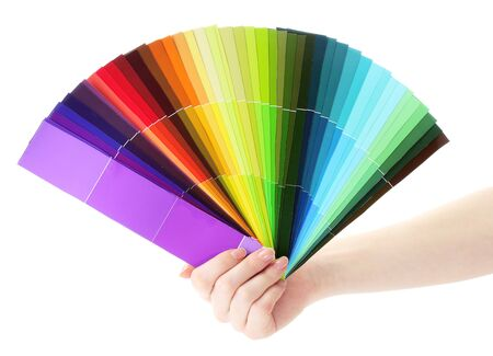 hand holding bright palette of colors isolated on white photo