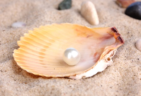 Sea shell with pearl on sand photo
