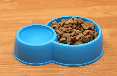 dry dog food and water in blue bowl on the floor photo