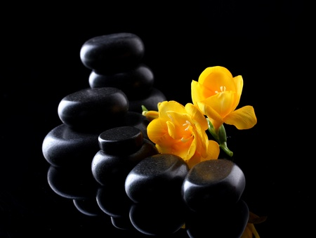 Spa stones and yellow flower on black background Stock Photo - 13082712
