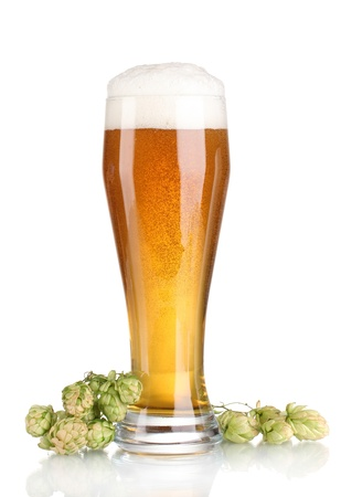 pouring beer: beer in a glass and green hop isolated on white