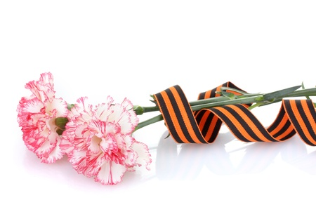 carnations and St. Georges ribbon isolated on white photo