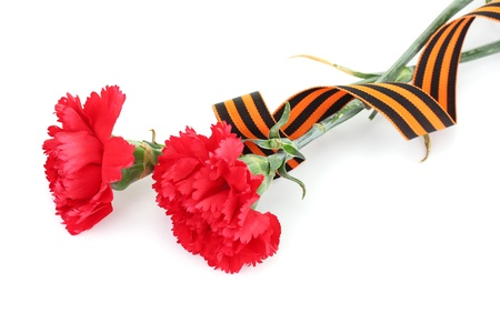 carnations and St. George's ribbon isolated on white Stock Photo - 13267871