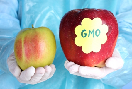 gmo: A scientist holds a genetically modified apple