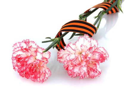 carnations and St. George's ribbon isolated on white Stock Photo - 13374247