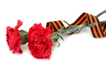 carnations and St. George's ribbon isolated on white Stock Photo - 13374773