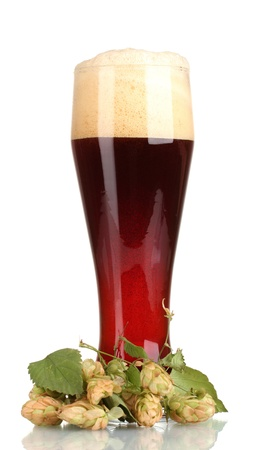 red beer with foam in glass and hop isolated on white photo