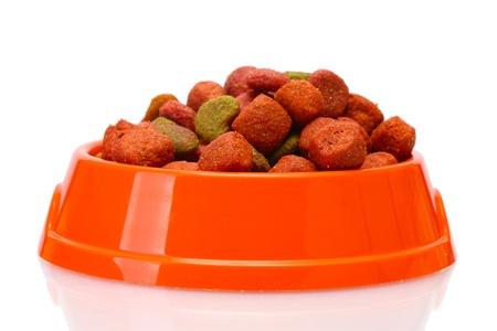 dry dog food in orange bowl  isolated on white photo