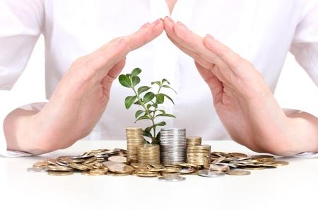 desarrollo econ�mico: Manos de mujer con monedas y plantas aisladas en blanco