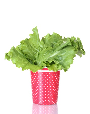 Salad in a red cup with white polka dots isolated on white Stock Photo - 13435183