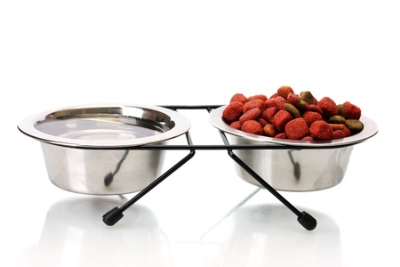dry dog food and water in metal bowls isolated on white Stock Photo - 13518311