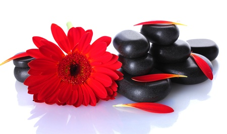 set in stone: Spa stones, red flower and petals isolated on white Stock Photo