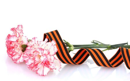 carnations and St. George's ribbon isolated on white Stock Photo - 13517970