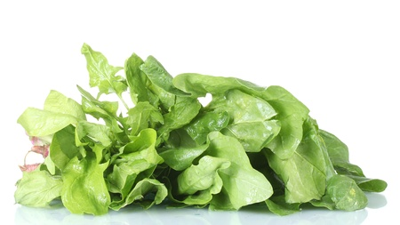 spinach isolated on white Stock Photo - 13518084