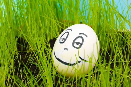 White egg with funny face in green grass Stock Photo - 13580011