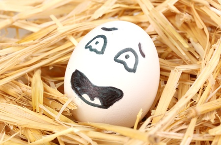White egg with funny face in straw photo