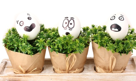 embarrassment: White eggs with funny faces on green bushes