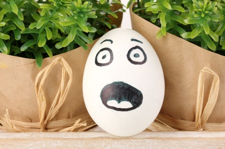 White egg with funny face near green bushes photo