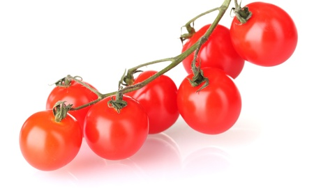 Beautiful cherry tomatoes on a branch isolated on white photo
