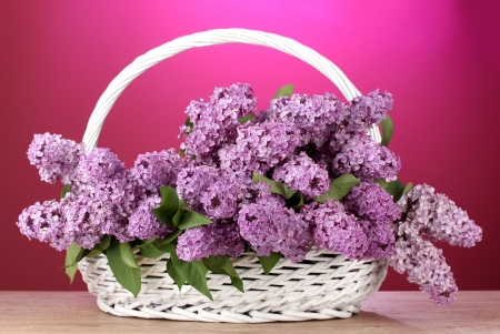 beautiful lilac flowers in basket on red background Stock Photo - 13667017