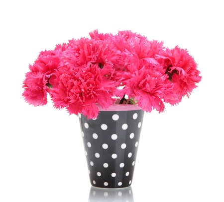 Bouquet of carnations in a vase isolated on white Stock Photo - 13664756