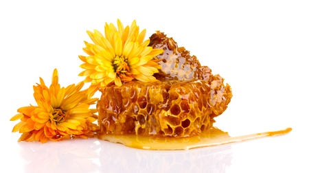 beeswax: tasty honeycombs and flowers isolated on white
