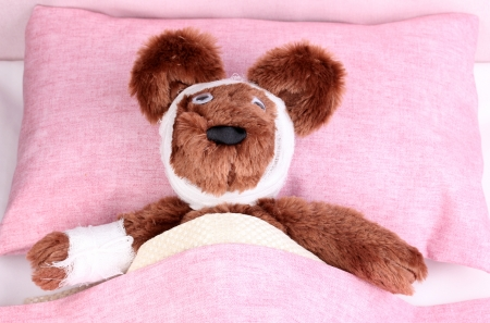 wound care: Sick bear in bed