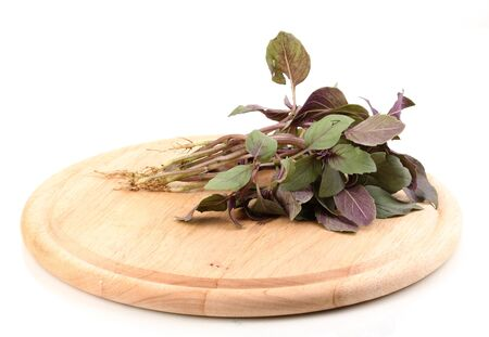 Fresh basil on wooden board isolated on white Stock Photo - 13791302