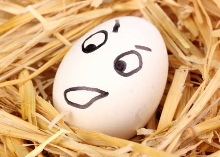 White egg with funny face in straw Stock Photo - 13793812