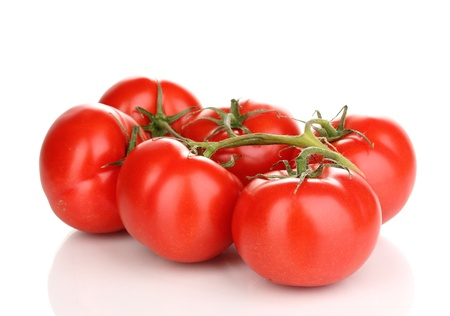 Fresh tomatoes on branch isolated on white photo