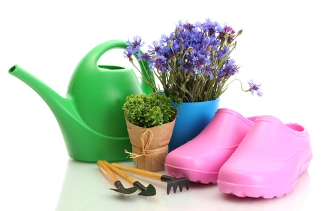 watering can, galoshes, tools and plants in flowerpot isolated on white Stock Photo - 13792260
