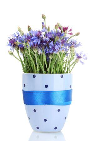 cornflowers in vase isolated on white photo