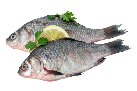 Fresh fishes with lemon and parsley isolated on white photo