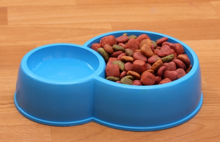 crackling: dry dog food and water in blue bowl on the floor Stock Photo
