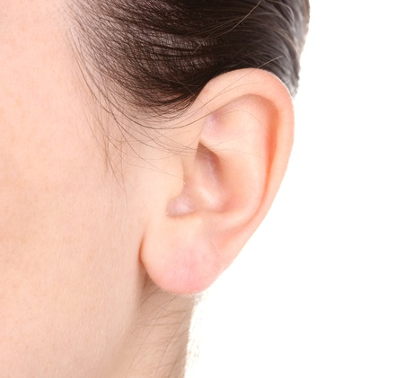 human ear: Human ear close-up isolated on white