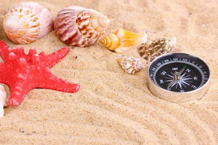 Seashells and starfish with kompass on sand close-up photo