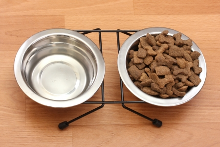 crackling: dry dog food and water in metal bowls on the floor