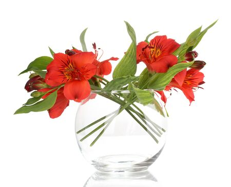 Alstroemeria in vase isolated on white photo