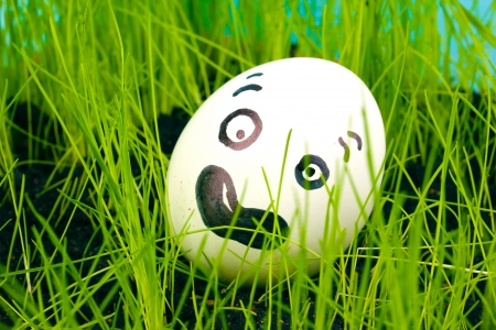 dodger: White egg with funny face in green grass